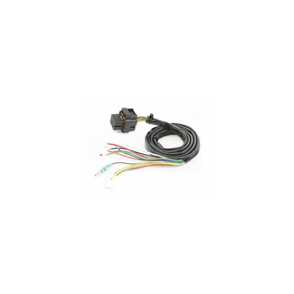 Wiring Harness Product Koso Db 01r Accessories From Vmax Bitz Uk